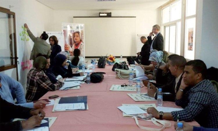 Le programme œuvrera à améliorer les compétences de 20 formateurs des centres de jeunesse, des centres de formation professionnelle pour les femmes et des ONG partenaires.