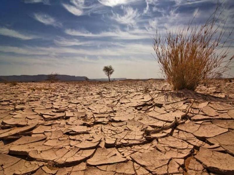 changement-climatique-fondation