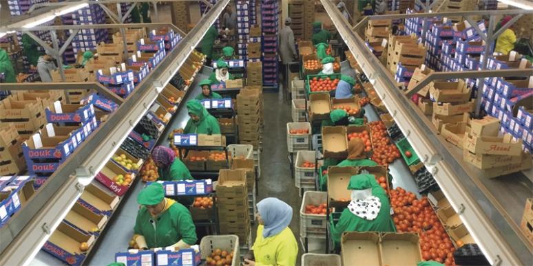 Les opérateurs agricoles se sentent marginalisés suite à la relance des travaux de la Commission sociale le 14 avril dernier, sans concertation avec les représentants du secteur. Un secteur, qui selon la Fifel, traverse de nombreuses perturbations dues aux grèves répétées (Ph. OM)