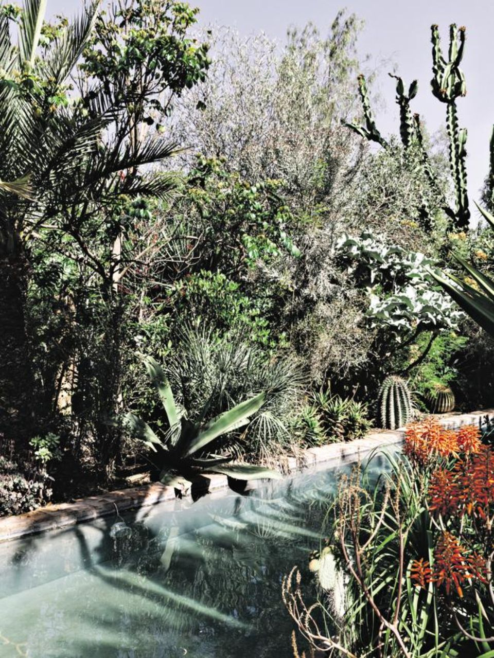 Le jardin Dar al Hossoun, un incroyable espace botanique. Photo Baptiste de Ville d'Avray. Hanslucas