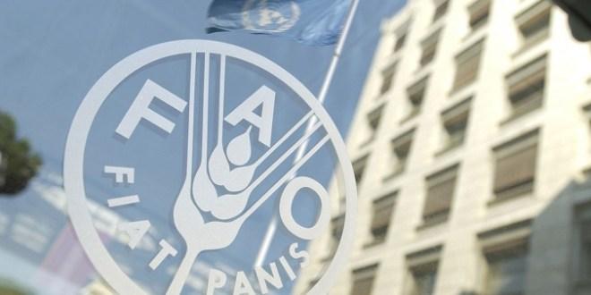 Une cérémonie de remise des attestations est prévue pendant l'atelier de Rabat en présence du représentant de la FAO au Maroc - (ph:DR)